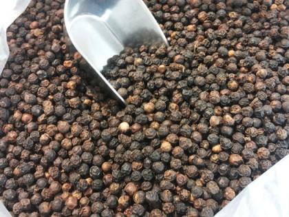 Organic Pepper and WauWau